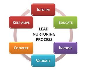 Lead Nurturing Process