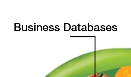 Business Databases